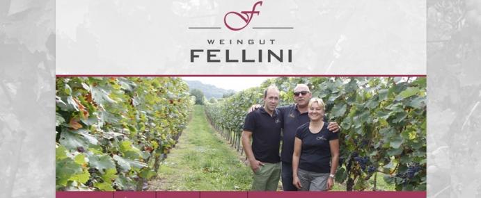 Neue Website für das Weingut Fellini