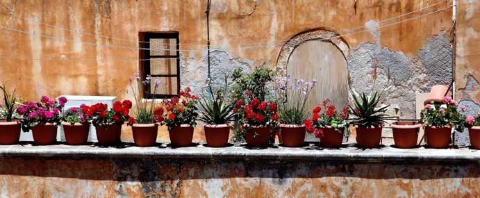 Blumentöpfe im Kloster Agia Triada